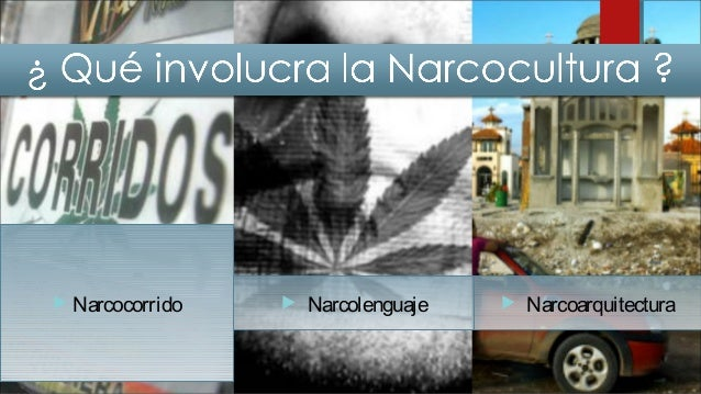 Lanarcoculturaen México no esun fenómeno nuevo, sehainstalado desdedécadasanterioresy seestápropagando alo largo del país,...