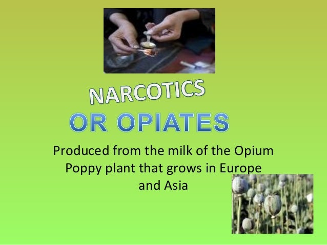 Produced from the milk of the OpiumPoppy plant that grows in Europeand Asia