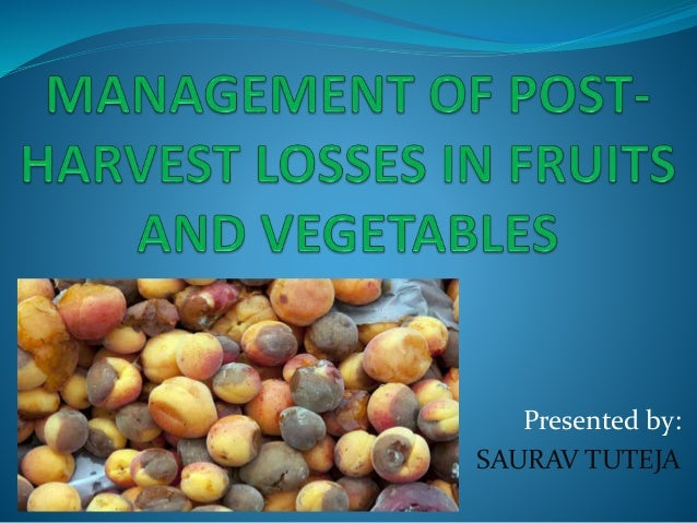 post harvest management of fruits Physiological disorders and major post harvest diseases of fruits and vegetables also deteriorate their quality8m × 1 the roof is made of thatch using local materials ventilators are provided at the top for exit of hot air from the store.