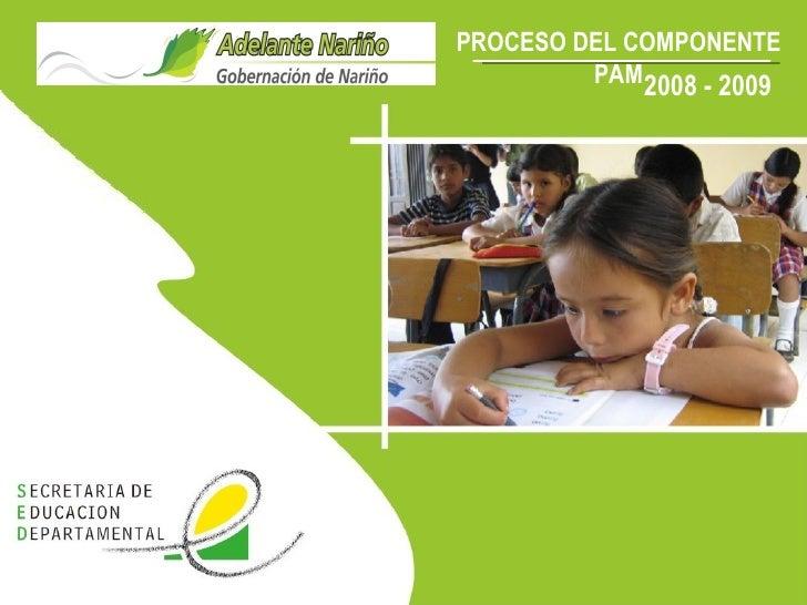 PROCESO DEL COMPONENTE PAM 2008 - 2009