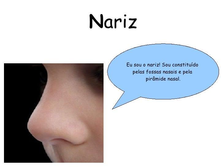 N ariz Eu sou o nariz! Sou  constituído   pelas fossas nasais e pela  pirâmide nasal.