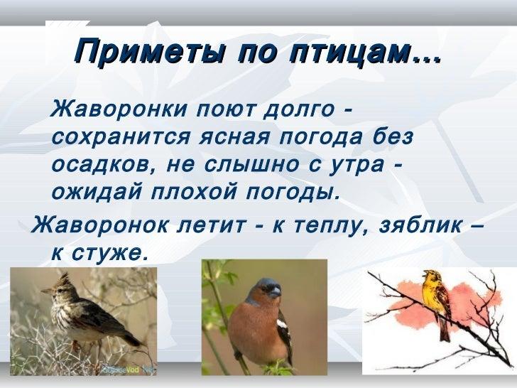 Погода арчединская волгоградской области