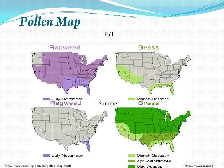 Allergy Map Of Us.Mold Allergies Map Us My Home And Yours