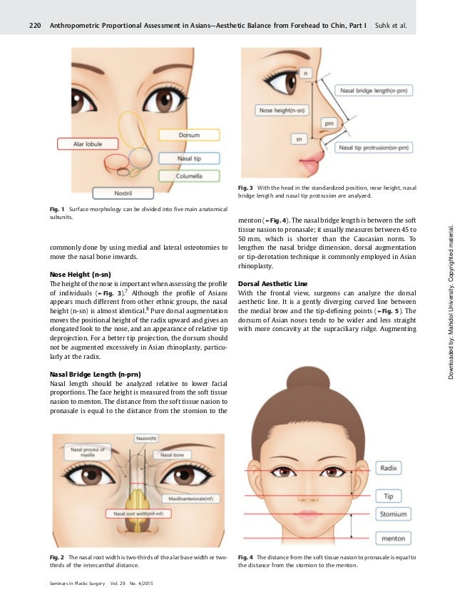 Nasal Analysis And Anatomy Anthropometric Proportional Assessment In