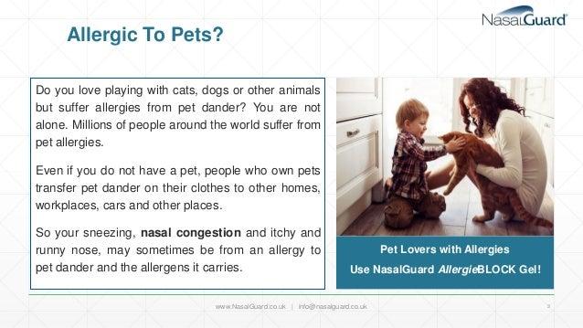 NasalGuard AllergieBLOCK For Pet Lovers- UK PPT  Slide 3