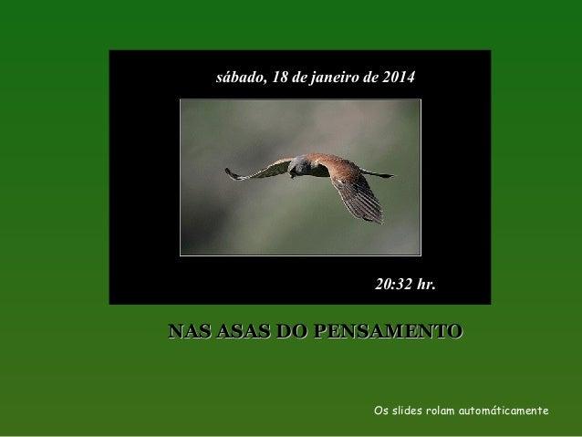sábado, 18 de janeiro de 2014  20:32 hr.  NAS ASAS DO PENSAMENTO  Os slides rolam automáticamente