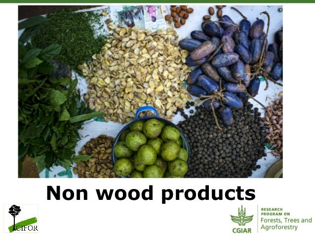 Non wood products