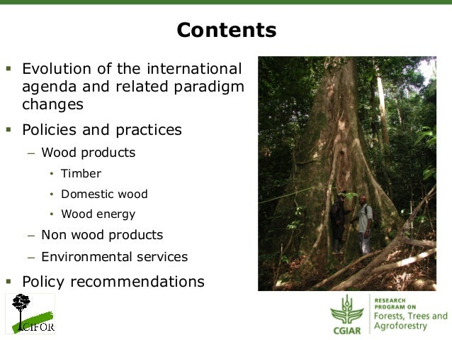 Contents§ Evolution of the internationalagenda and related paradigmchanges§ Policies and practices– Wood products• T...