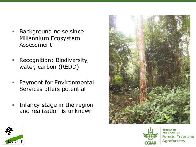 § Background noise sinceMillennium EcosystemAssessment§ Recognition: Biodiversity,water, carbon (REDD)§ Payment for ...