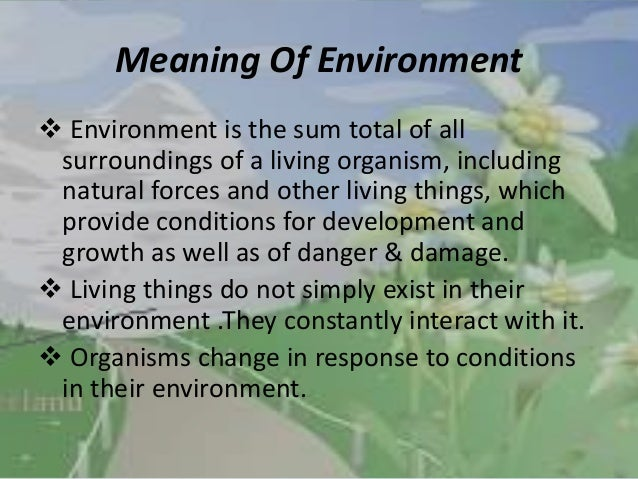 definition of the environment pdf