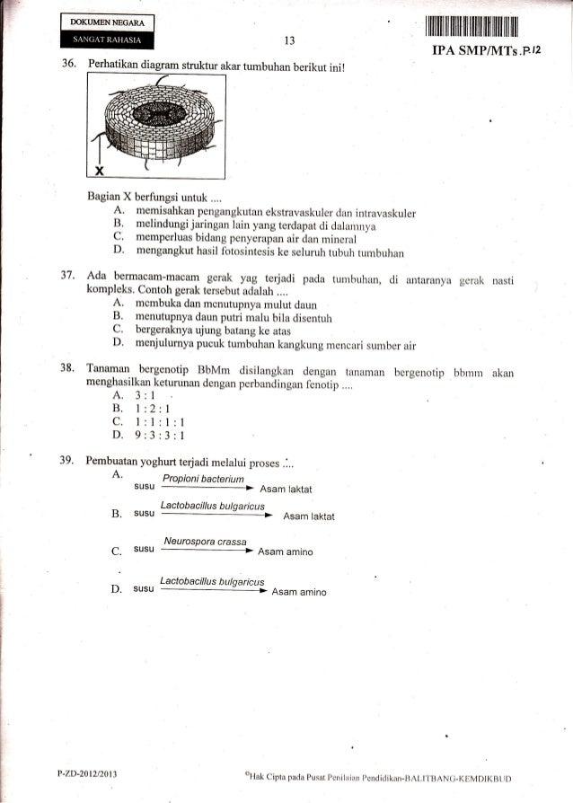 Naskah Soal Ujian Nasional Ipa Smp Tahun 2013 Paket 12