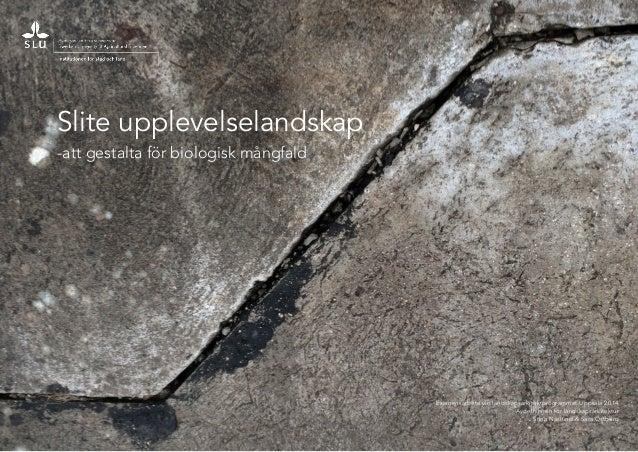 Examensarbete vid landskapsarkitektprogrammet Uppsala 2014  Avdelningen för landskapsarkitektur  Stina Näslund & Sara Östb...