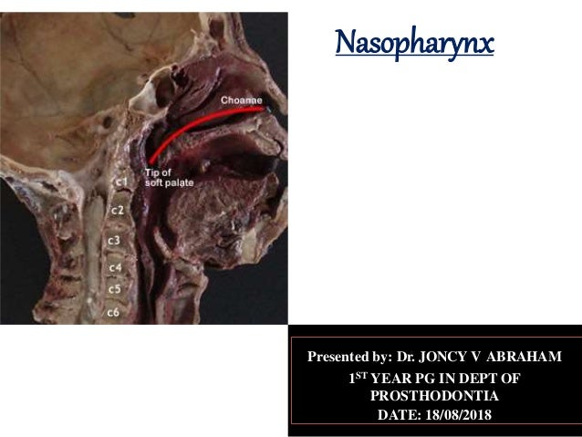 Nasopharynx Presented by: Dr. JONCY V ABRAHAM 1ST YEAR PG IN DEPT OF PROSTHODONTIA DATE: 18/08/2018