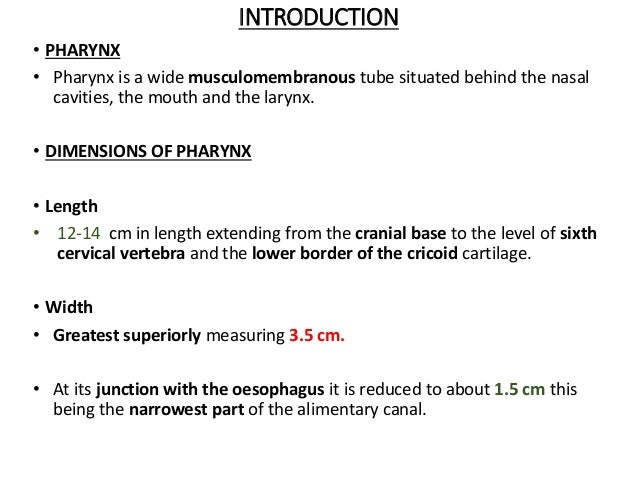 Nasopharynx  gross anatomy and applied anatomy in dental and medical aspects Slide 3