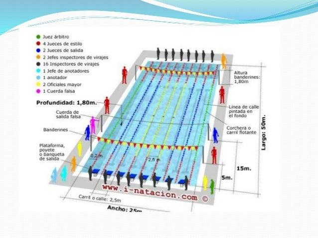 Nataci n y clavados for Medidas de una piscina olimpica