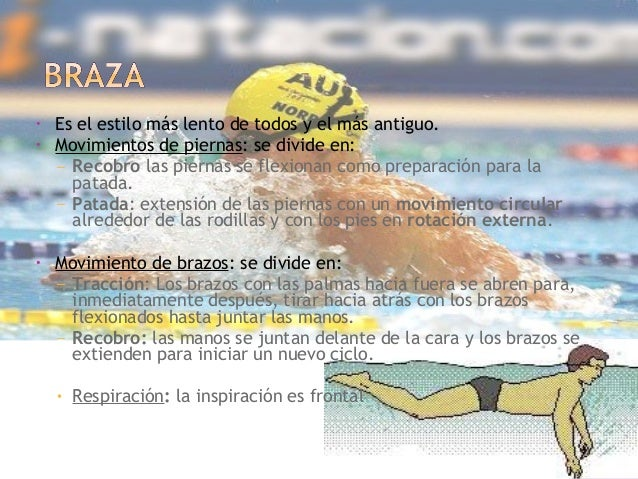 Natacionunsaac - Banarse con delfines portugal ...
