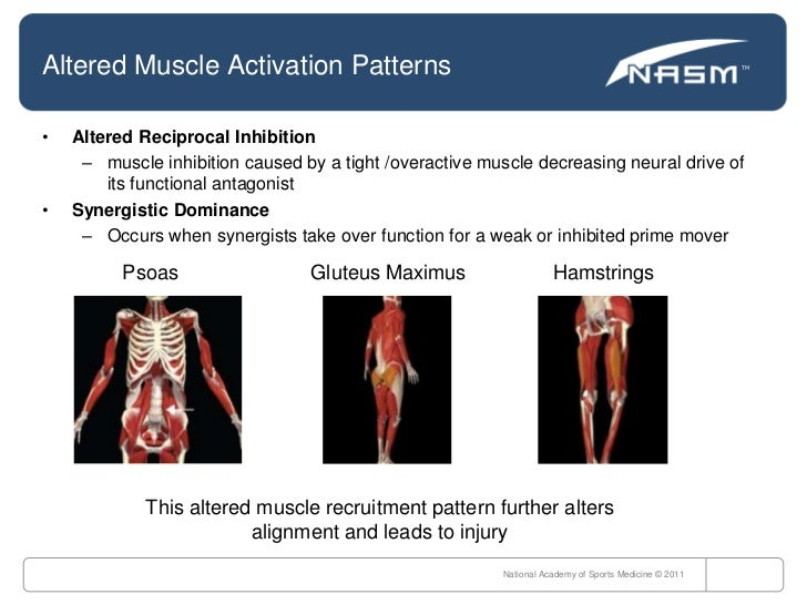 NASM Chapter 6 Flashcards - Create, Study and Share Online ...