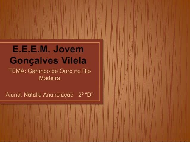 """TEMA: Garimpo de Ouro no Rio Madeira Aluna: Natalia Anunciação 2º """"D"""""""
