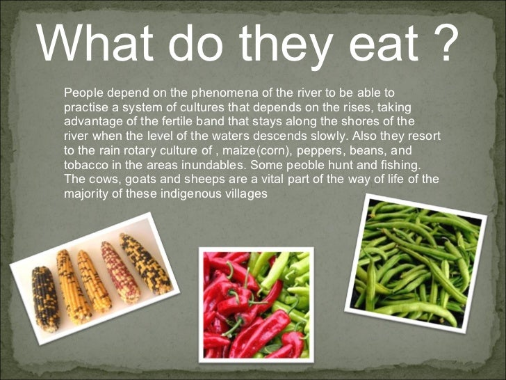What do they eat ?  People depend on the phenomena of the river to be able to practise a system of cultures that depends o...