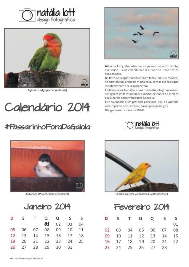 Além da fotografia, observar os pássaros é outro hobby  Agaponis (Agapornis pullarius)  Calendário 2014  que tenho. E esse...