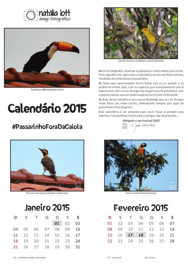 Tucanuçu ( )Ramphastos toco Calendário 2015 #PassarinhoForaDaGaiola Além da fotografia, observar os pássaros é outro hobby...