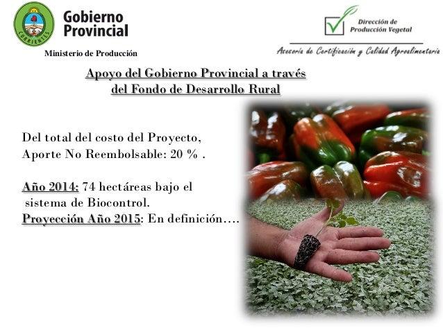 Natalia ojeda programa de apoyo a la competitividad de for Horticultura definicion