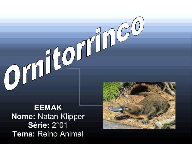 EEMAK Nome: Natan Klipper Série: 2°01 Tema: Reino Animal