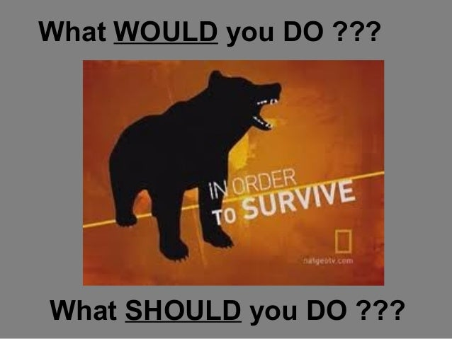 What WOULD you DO ???  What SHOULD you DO ???