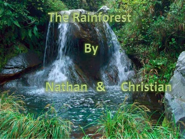 • Plants and animals with the same climate needs that live in a certain place.