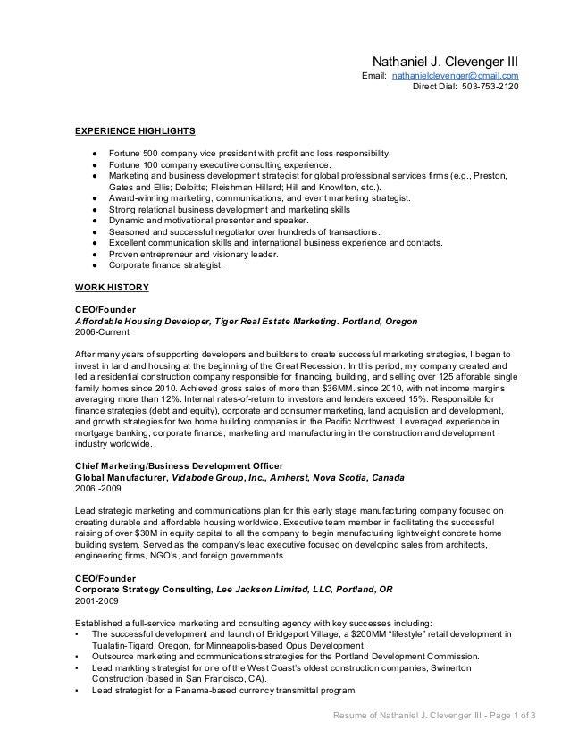 Business Development Director Resume Samples Yangi  Business Development Resume Sample