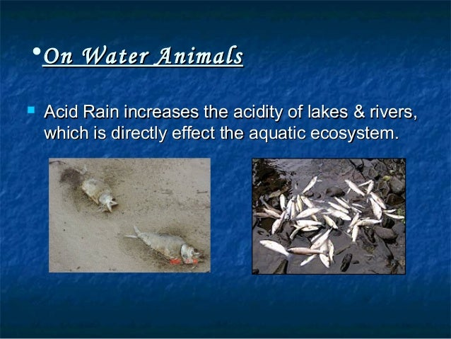Causes, Effects and Solutions of Acid Rain - Conserve ...