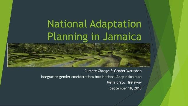 National Adaptation Planning in Jamaica Climate Change & Gender Workshop Integration gender considerations into National A...