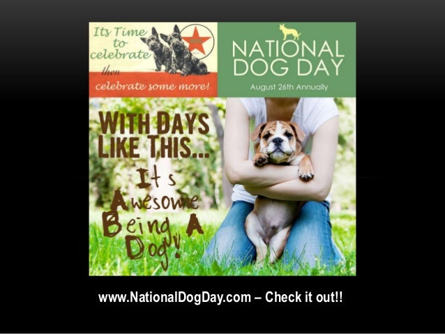www.NationalDogDay.com – Check it out!!