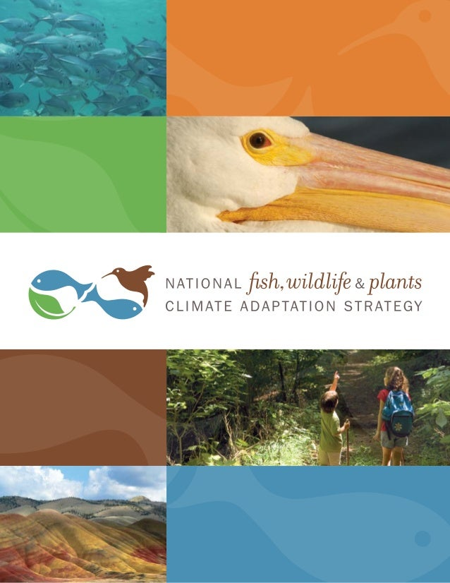 National Fish, Wildlife and Plants                  about this report                                    acknowledgementCl...