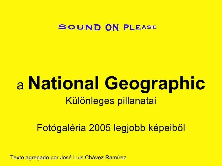 a  National Geographic Különleges pillanatai Fotógaléria 2005 legjobb képeiből Texto agregado por José Luis Chávez Ramírez