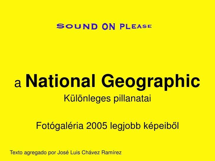a National                        Geographic                     Különleges pillanatai            Fotógaléria 2005 legjobb...