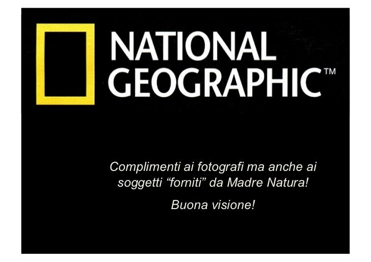 """Complimenti ai fotografi ma anche ai soggetti """"forniti"""" da Madre Natura!          Buona visione!"""