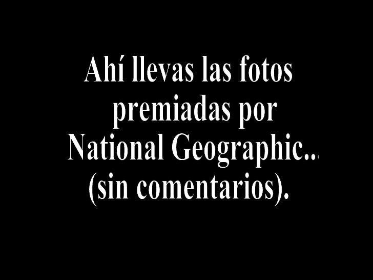 Ahí llevas las fotos premiadas por National Geographic... (sin comentarios).