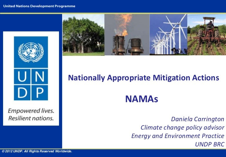 Nationally Appropriate Mitigation Actions                                                       NAMAs                     ...