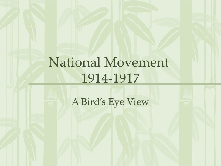 National Movement  1914-1917 A Bird's Eye View