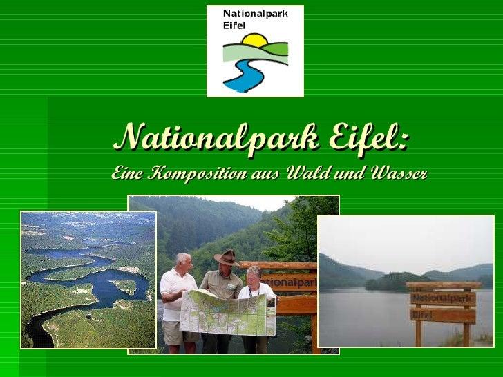 Nationalpark Eifel:   Eine Komposition aus Wald und Wasser