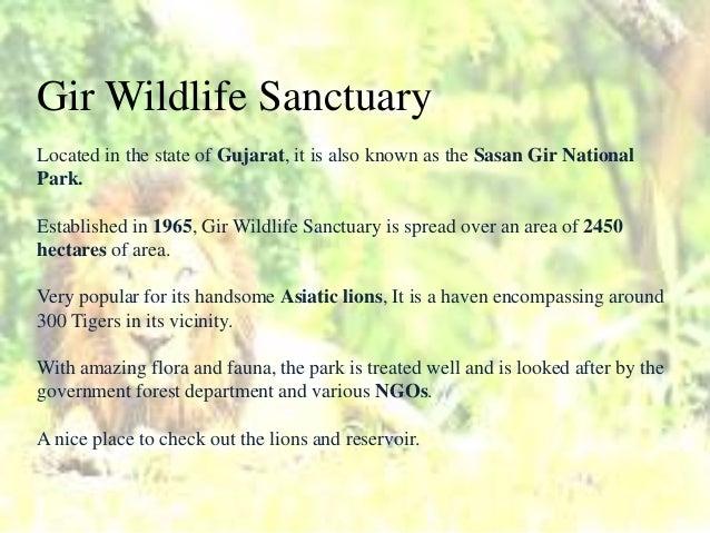 Various - Sanctuary Masters