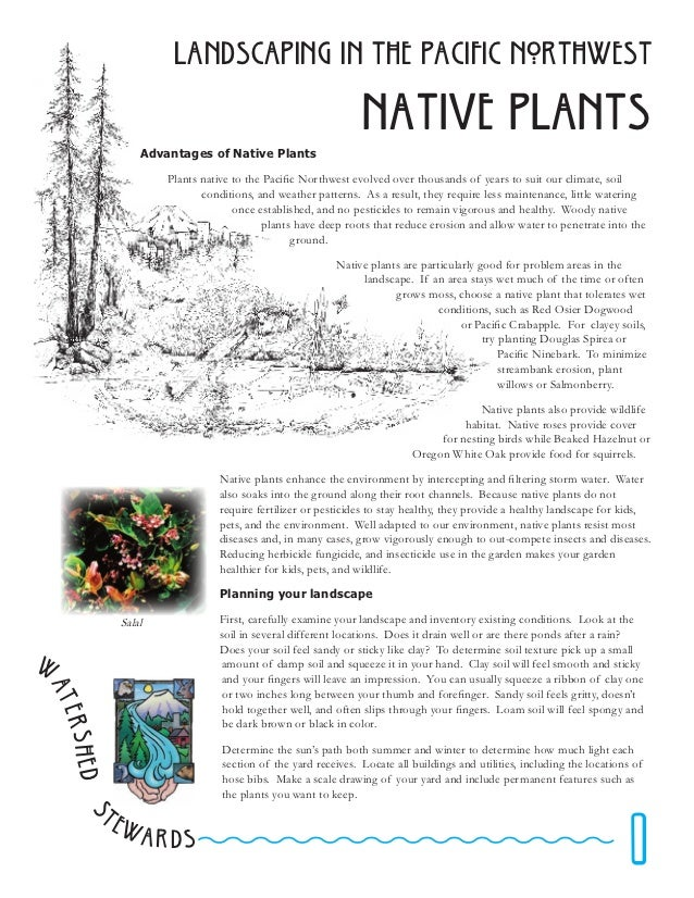 Landscaping in The pacific northwest                                                              Native plants           ...