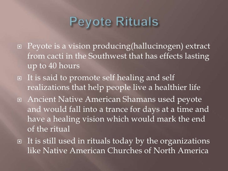 the prevalence of the practice of peyote religion in north america Peyote, a cactus that contains the hallucinogenic substance mescaline a generally applicable law or regulation that places an incidental burden on religious practice is constitutional, justice scalia said, unless it is ''specifically directed'' at a religious act.