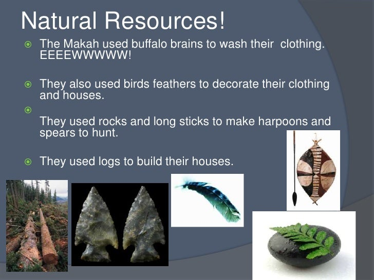 Pacific Northwst Natural Resources