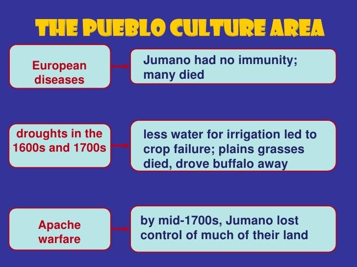 The Plains Culture   Area