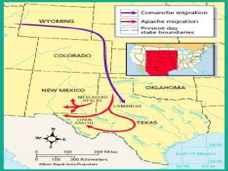 The Southeastern Culture AreaQuestion:What traits did theCaddo, Wichita, andAtakapa have incommon?