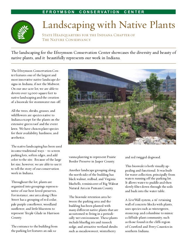 Landscaping With Native Plants : Landscaping with native plants indianapolis indiana