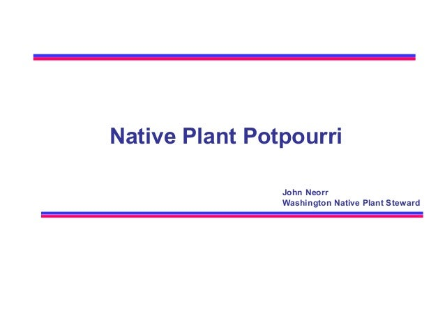 Native Plant Potpourri John Neorr Washington Native Plant Steward