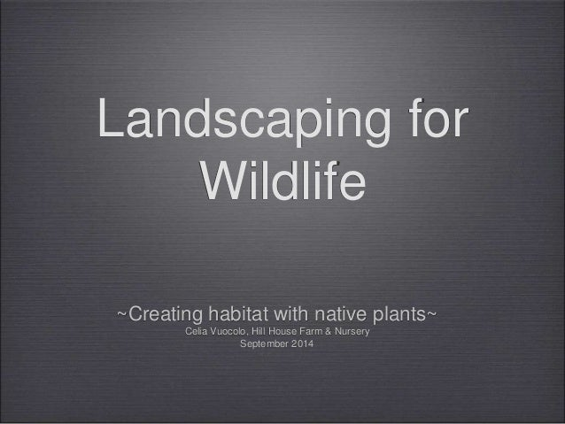 Landscaping for  Wildlife  ~Creating habitat with native plants~  Celia Vuocolo, Hill House Farm & Nursery  September 2014